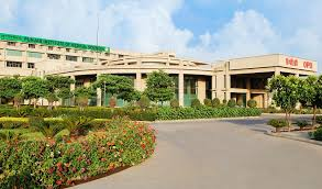 punjab-institute-of-medical-sciences