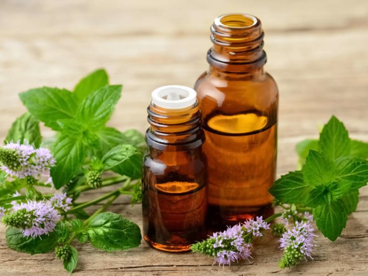 supplement and herbs for kids